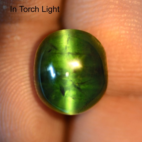 8.27 Cts Natural Lustrous Rich Green Tourmaline Cats Eye Oval Cabochon 12x10 mm