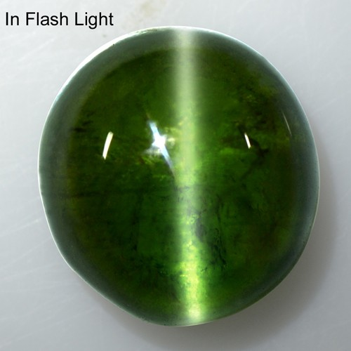 9.49 Cts Natural Lustrous Rich Green Tourmaline Cats Eye Fancy Round Cab Brazil