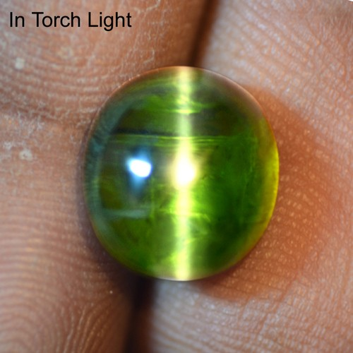 9.12 Cts Natural Lustrous Sharp Green Tourmaline Cats Eye Oval Cab Brazil Loose